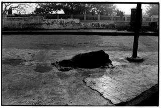 india_web_photo_06.jpg